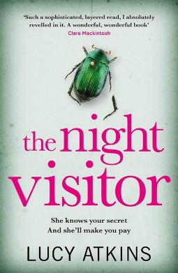 Book review: The Night Visitor by Lucy Atkins