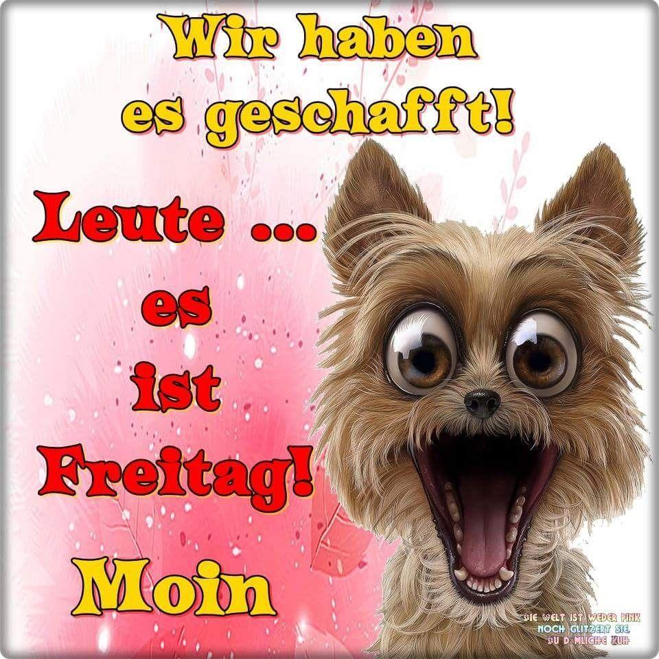 Schonen Freitag Gif Lustig Bilder Und Spruche Fur Whatsapp Und