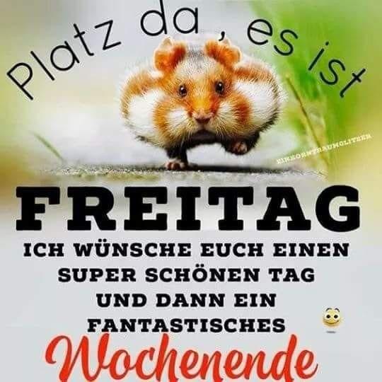Schonen Freitag Lustig Gif Bilder Und Spruche Fur Whatsapp Und