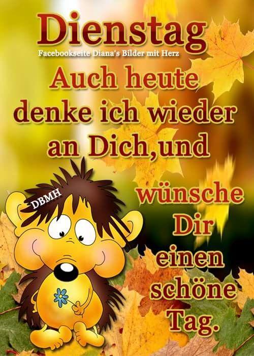 Guten Morgen Dienstag Lustig Bilder Und Spruche Fur Whatsapp Und