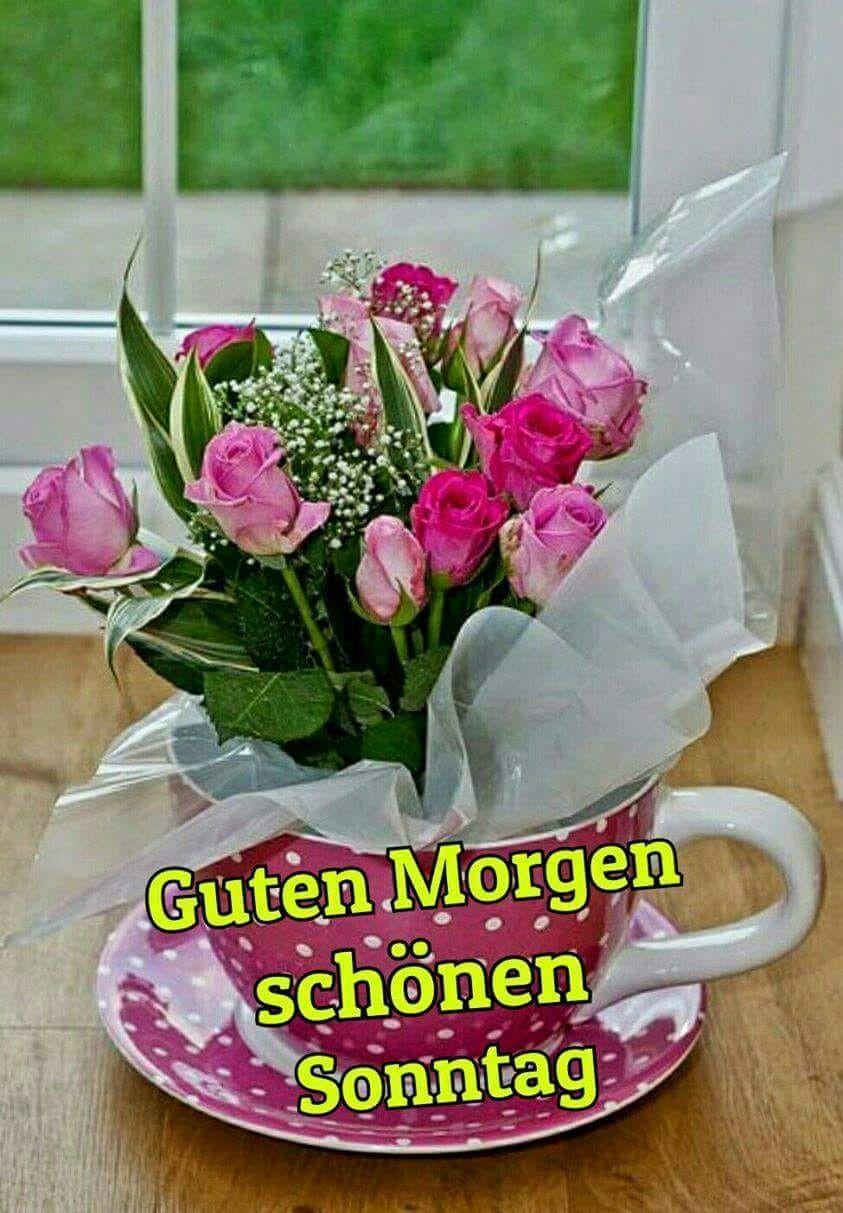 Spruch Sonntag Lustig Bilder Und Spruche Fur Whatsapp Und