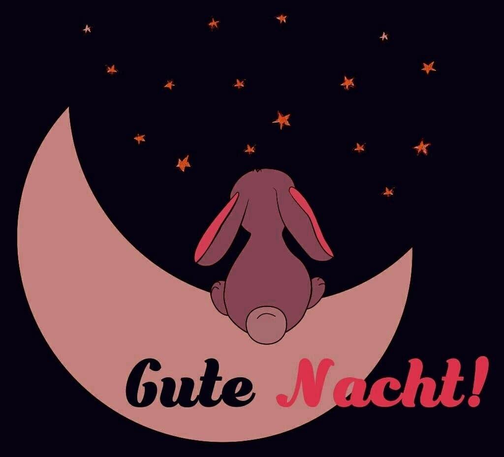 Gute Nacht Video Lustig Bilder Und Spruche Fur Whatsapp Und