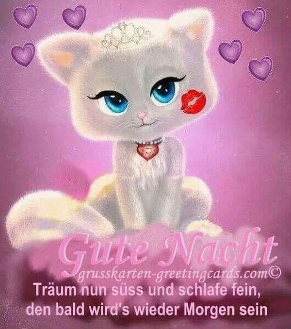 Gutenachtgeschichte Gute Nacht Gute Nacht Spruche Gute Nacht Lustig