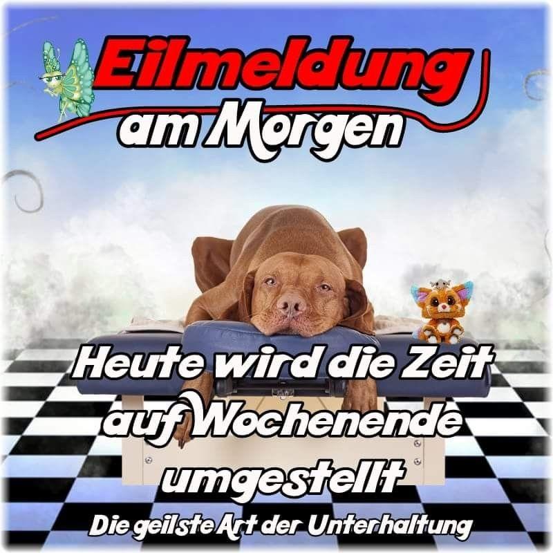 Schonen Freitag Lustig Bilder Und Spruche Fur Whatsapp Und