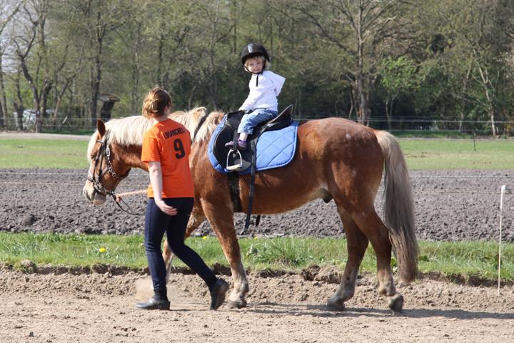 Paardrijden & Huifkarverhuur