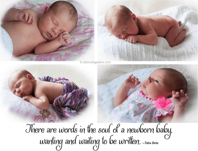 Newborn Collage