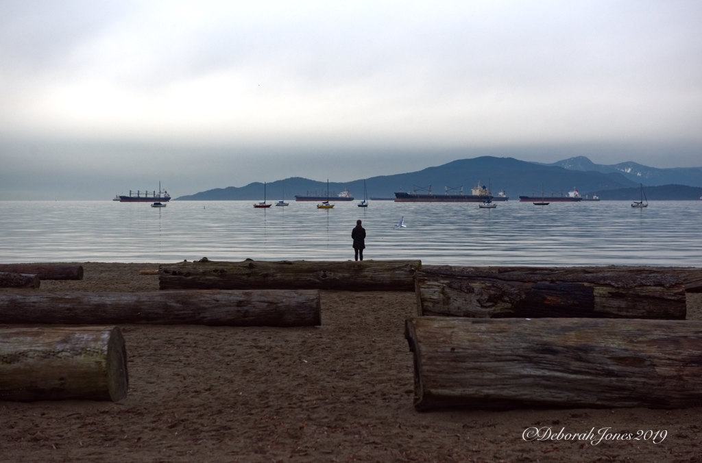 Dogwood 2019 challenge 2019 Week 5: Composition, Landscape & symmetry. Overlooking the Salish Sea's English Bay from Kitsilano Beach, Vancouver, Canada. A typical winter day in the rainforest zone of the Pacific Northwest.