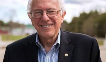 Is Bernie Sanders Elderly?