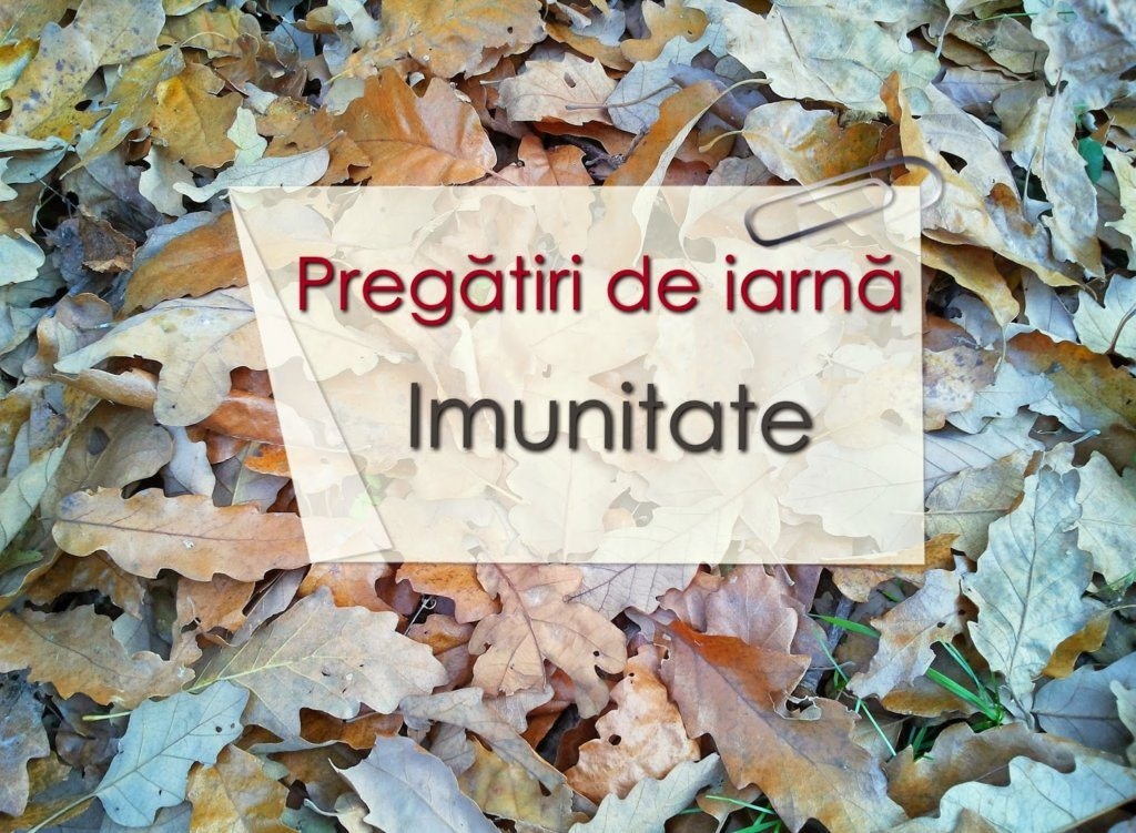 Pregatiri de iarna – Imunitatea