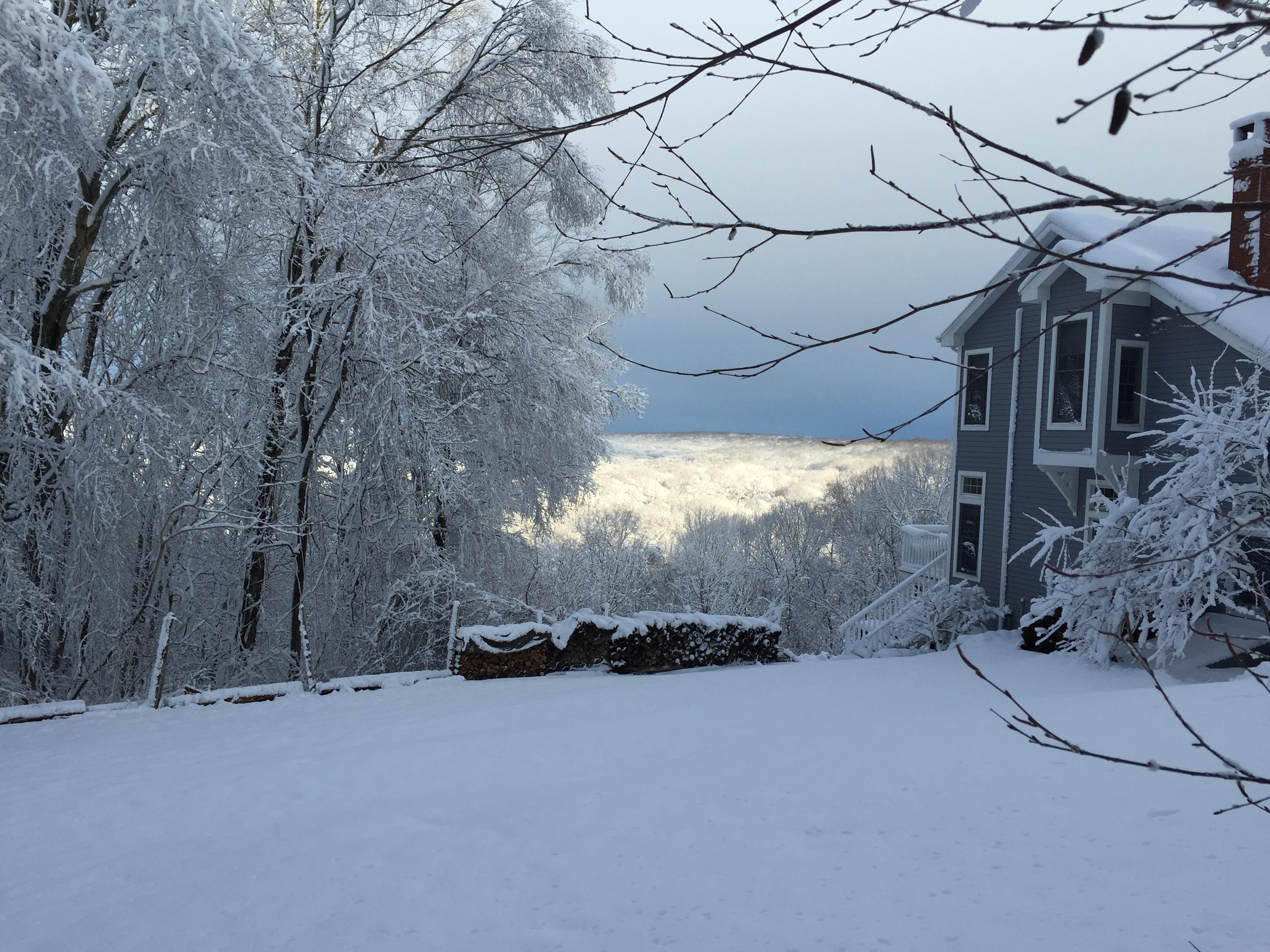 Wandering For The Wonder Of Winter Light …
