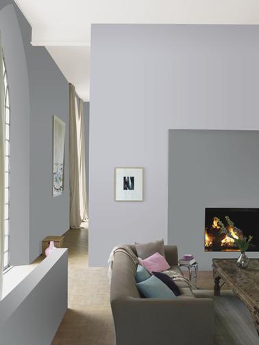 Peinture Gris Souris Et Gris Perle Pour Deco Salon Zen