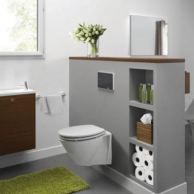 WC Suspendu Ambiance Gris Et Vert