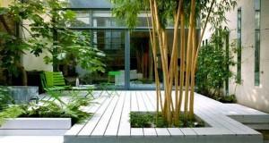 Les 8 Plantes Ftiches Dun Jardin Zen Deco Cool