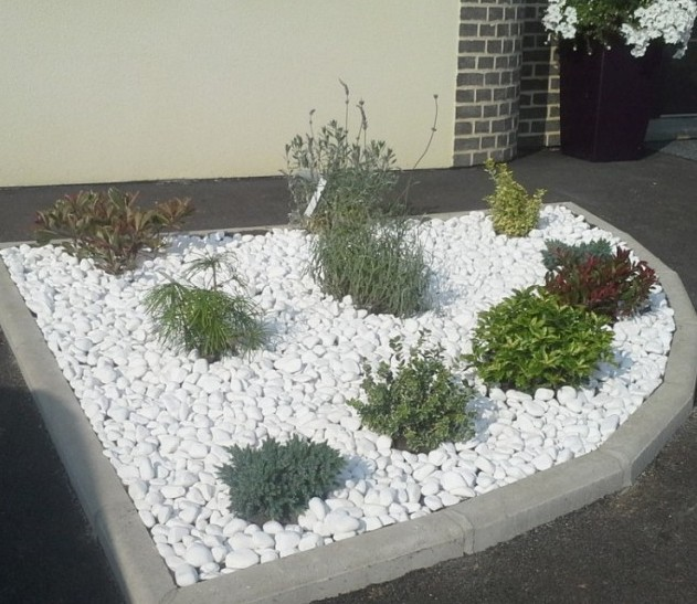 Jardini Arowana Max Size: Galet Blanc Deco Jardin