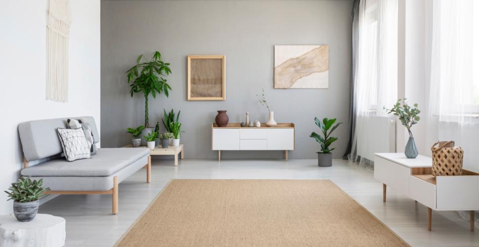 photos deco idees decoration d appartement