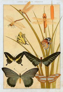 m-p-verneuil-butterflies-1897