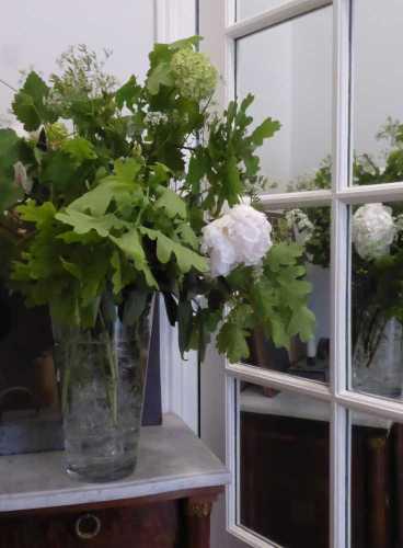 bouquet_pivoines_viburnum_feuilles-de-chene_ombelles