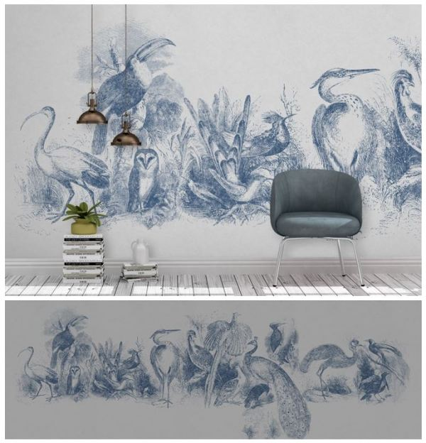PP_Yeda_oiseaux_bleus_plumage