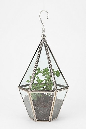 urban_outfitters_terrariums