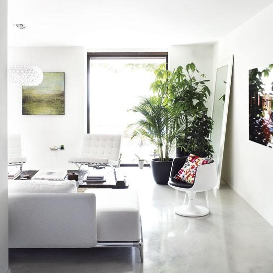 conseils d co quelles plantes pour mon salon. Black Bedroom Furniture Sets. Home Design Ideas