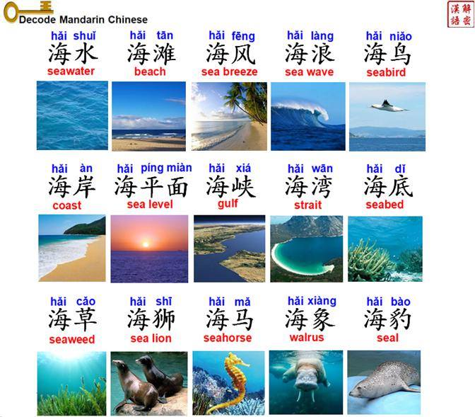 Vocabulary about sea