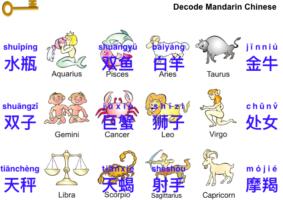 12 Zodiac Signs 十二星座