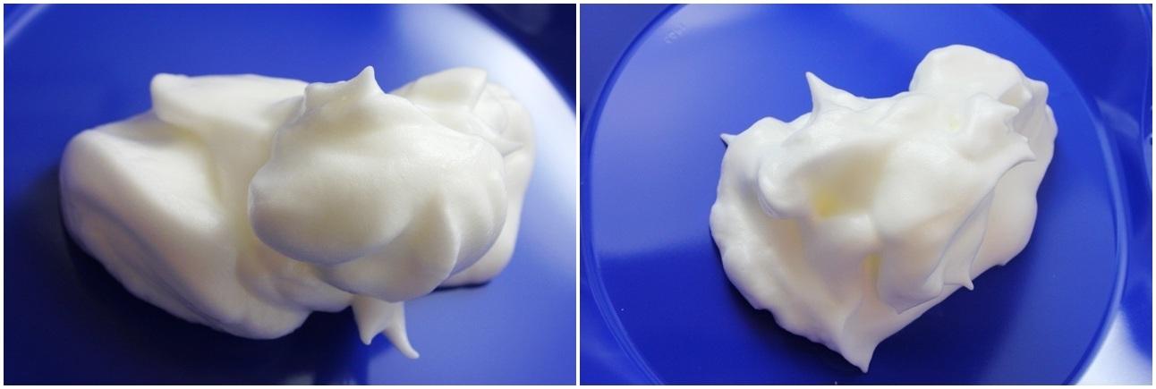 Egg Foams (fresh; old)