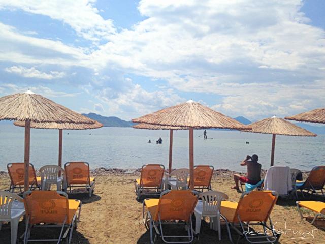 beach party (2)