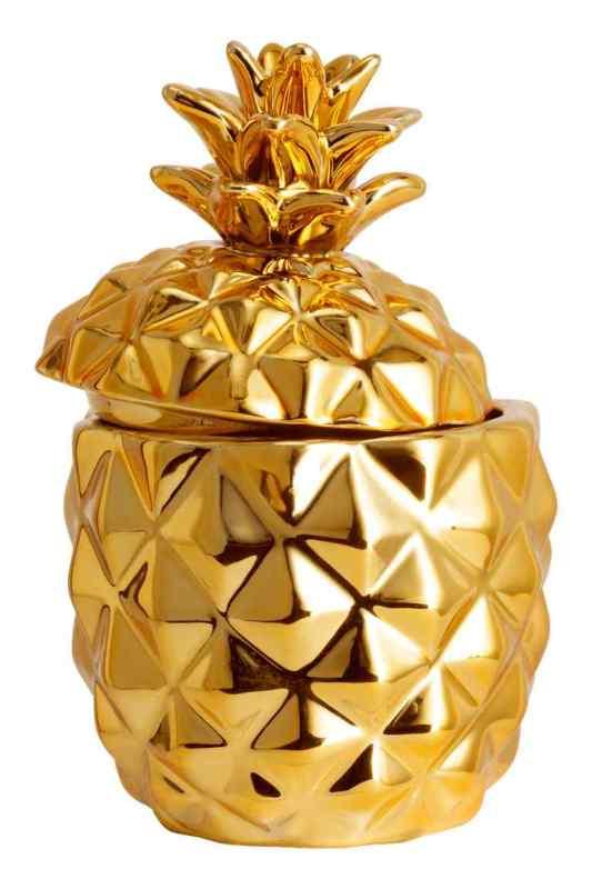 ananas (2)