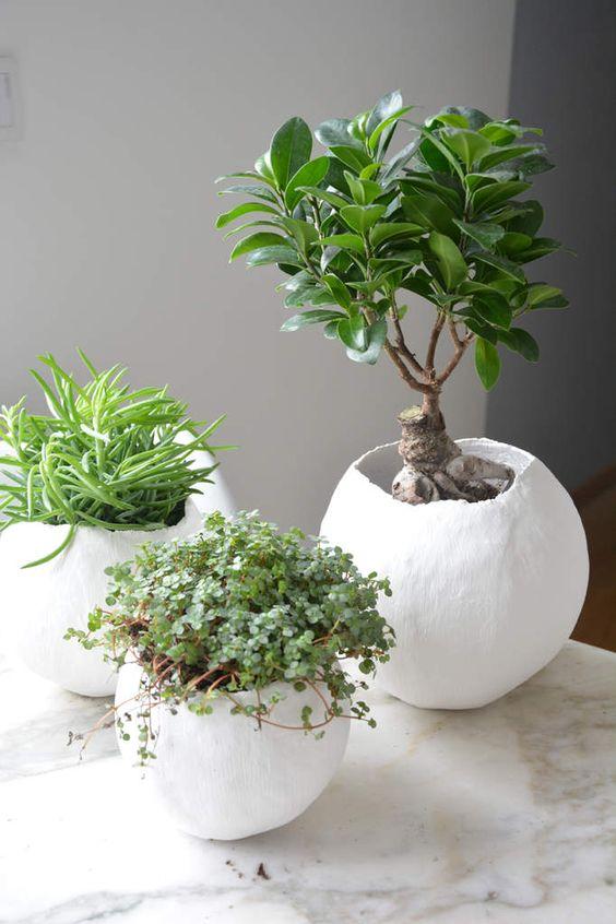Des Cache Pots Personnaliss Pour Petites Plantes D