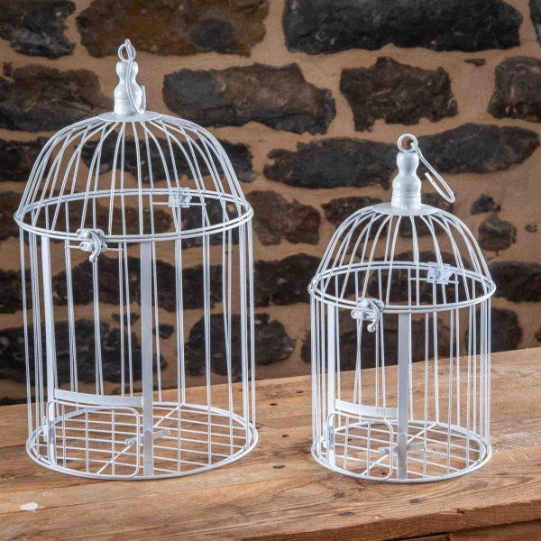 location-cage-a-oiseaux-C