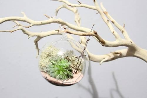 ideas para decorar con ramas secas 13