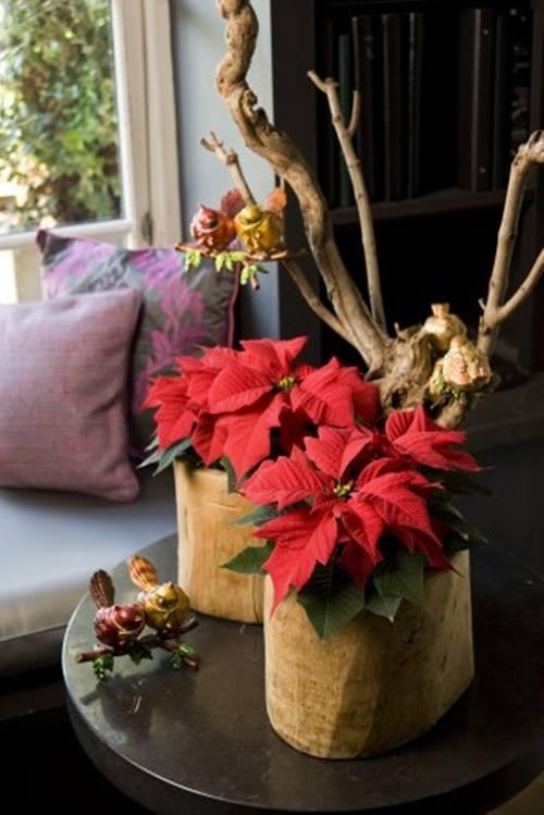 Arreglos de Navidad con flor de pascua de estilo vintage 3