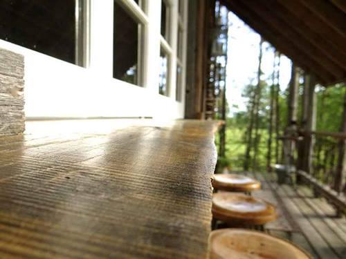 Genuina cabaña de madera sobre los árboles para vivir 7