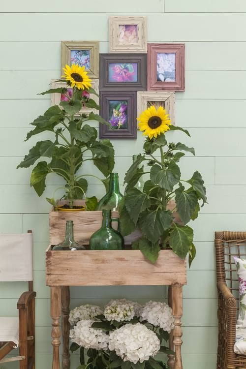 Imaginativas ideas de decoraci n de leroy merlin 2014 - Leroy merlin casetas jardin ninos angers ...