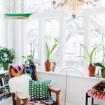 Tendencia jungla urbana ¡el ultimo grito en diseño interior! 13