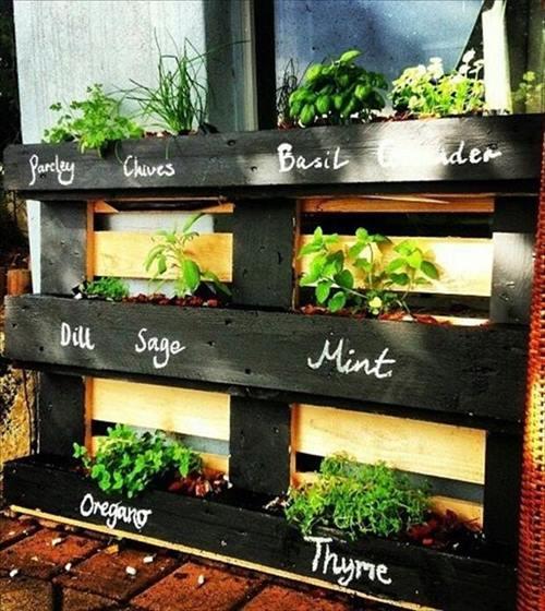 Ejemplo de muebles con palets reciclados: aquí tenemos una jardinera con aromáticas.