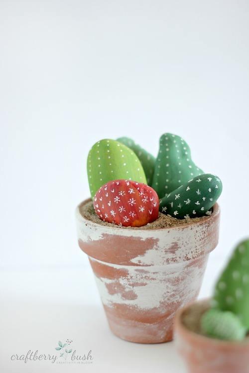 Los cactus falsos que no necesitan riego pero decoran un montón... 3