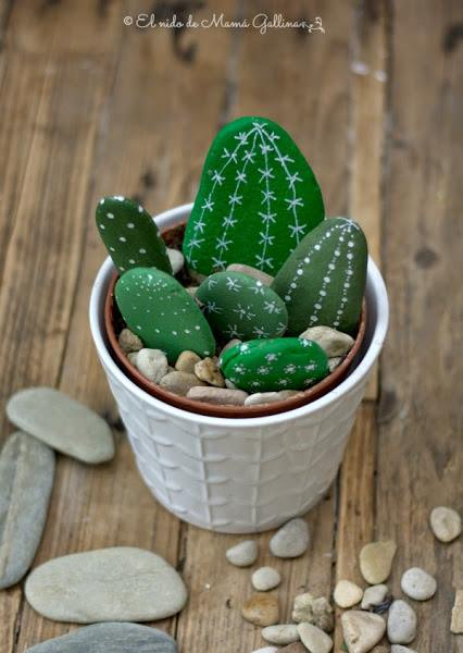 Los cactus falsos que no necesitan riego pero decoran un montón... 4