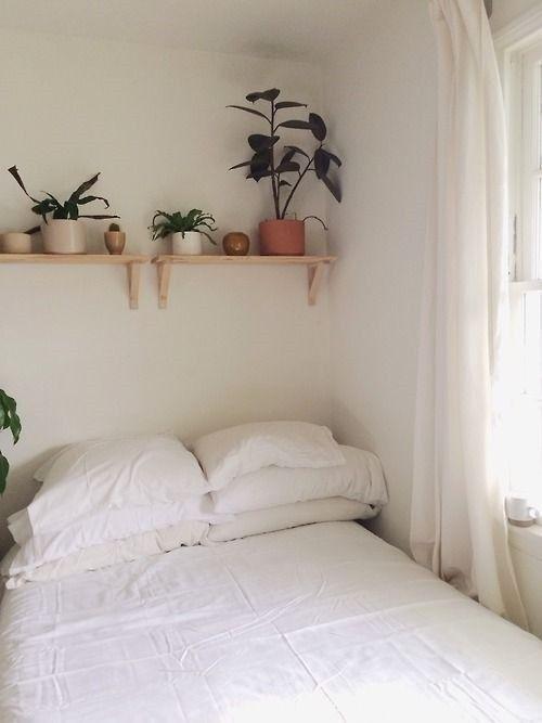 ¡Mi casa, mi selva! 20 ideas para decorar con plantas de interior 18