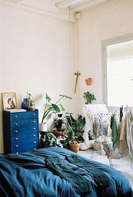 ¡Mi casa, mi selva! 20 ideas para decorar con plantas de interior 5