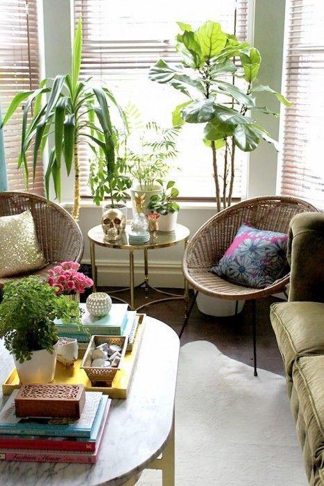 Los 25 rincones con plantas de interior más bellos de Pinterest 14