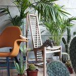 Los 25 rincones con plantas de interior más bellos de Pinterest 18