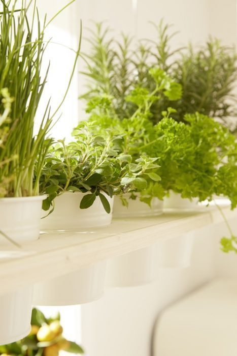 DIY decoracion cómo hacer baldas de madera para plantas 2