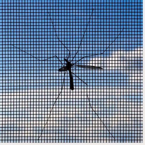Tipos de mosquiteras según la malla que lleven.