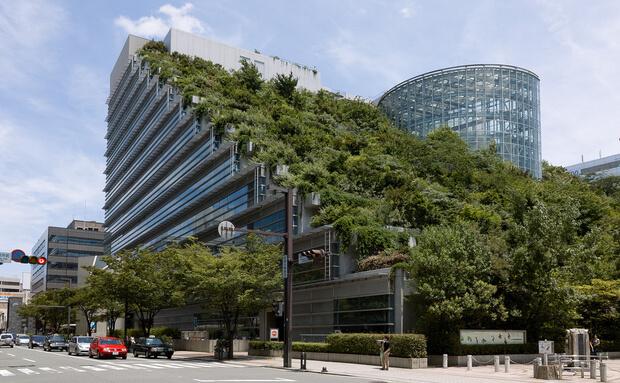 Jardim vertical em prédio