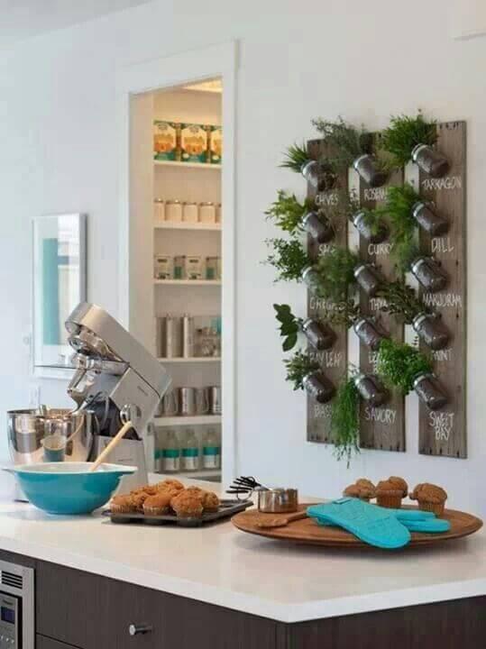 jardim vertical para culinaria