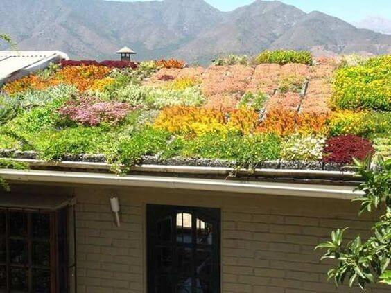 telhado verde casa