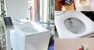 Decoracion 10 para baños, un inodoro de lujo