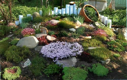 jardin al estilo rustico